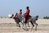/Bahrain/visit/gallery/Stable/thumbnails/IMG_3101.jpg
