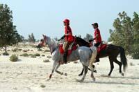 /Bahrain/visit/gallery/Stable/thumbnails/IMG_3379.jpg