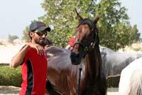 /Bahrain/visit/gallery/Stable/thumbnails/IMG_3438.jpg