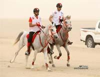 /international/Bahrain/2008CrownPrinceCup/gallery/thumbnails/OSM31449.jpg