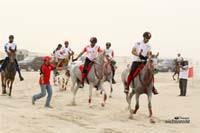 /international/Bahrain/2008CrownPrinceCup/gallery/thumbnails/OSM31478.jpg