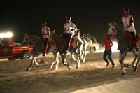 /international/Bahrain/2008CrownPrinceCup/gallery/thumbnails/OSM31708.jpg