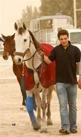 /international/Bahrain/2008HMTheKingsEnduranceCup/Gallery/VetIn/thumbnails/_SAM4317.jpg