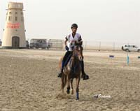/international/Bahrain/2008HMTheKingsEnduranceCup/Gallery/theRide/thumbnails/OSM33905.jpg