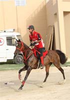 /international/Bahrain/2008HMTheKingsEnduranceCup/Gallery/theRide/thumbnails/OSM33980.jpg