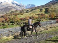 /international/Chile/2009TorresDelPaine/gallery/may1_ride/thumbnails/IMG_3998.jpg