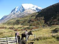 /international/Chile/2009TorresDelPaine/gallery/may1_ride/thumbnails/IMG_4123.jpg