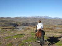/international/Chile/2009TorresDelPaine/gallery/may1_ride/thumbnails/IMG_4195.jpg