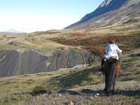 /international/Chile/2009TorresDelPaine/gallery/may1_ride/thumbnails/IMG_4198.jpg