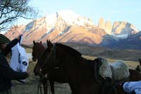 /international/Chile/2009TorresDelPaine/gallery/may2_morning/thumbnails/IMG_5481.jpg