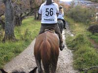 /international/Chile/2009TorresDelPaine/gallery/may2_ride/thumbnails/IMG_4435.jpg