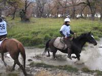 /international/Chile/2009TorresDelPaine/gallery/may2_ride/thumbnails/IMG_4438.jpg