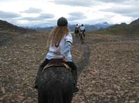 /international/Chile/2009TorresDelPaine/gallery/may2_ride/thumbnails/IMG_4554.jpg