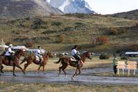 /international/Chile/2009TorresDelPaine/gallery/may2_ridefinish/thumbnails/IMG_5605.jpg