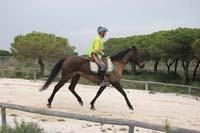 /international/Spain/2009AlAndalus/gallery/m28gallery/thumbnails/IMG_3577.jpg
