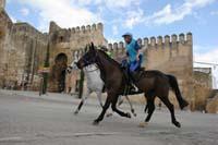 /international/Spain/2009AlAndalus/gallery/m30gallery/thumbnails/IMG_4894.jpg