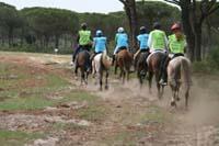 /international/Spain/2010AlAndalus/gallery/April12_Day3/thumbnails/IMG_4369.jpg