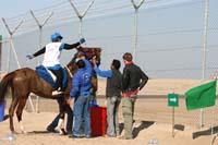/international/UAE/2008AlNayhanLadiesChallenge/Gallery/ride_day/thumbnails/IMG_7230.jpg
