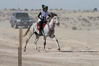 /international/UAE/2008AlNayhanLadiesChallenge/gallery_best/thumbnails/IMG_0445.jpg