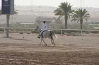 /international/UAE/2008DubaiWorldChallenge/Gallery/Group1/thumbnails/IMG_9118.jpg