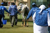 /international/UAE/2008DubaiWorldChallenge/Gallery/Group4/thumbnails/IMG_9739.jpg