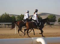 /international/UAE/2008PresidentsCup/Gallery/johntView/thumbnails/IMG_0984.jpg