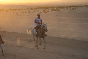 /international/UAE/2008PresidentsCup/Gallery/loop1best/thumbnails/IMG_3489.jpg