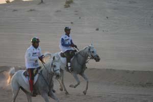 /international/UAE/2008PresidentsCup/Gallery/loop1best/thumbnails/IMG_3494.jpg