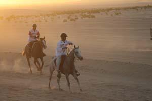 /international/UAE/2008PresidentsCup/Gallery/loop1best/thumbnails/IMG_3522.jpg