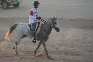/international/UAE/2008PresidentsCup/Gallery/loop1best/thumbnails/IMG_3526.jpg
