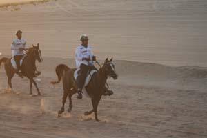 /international/UAE/2008PresidentsCup/Gallery/loop1best/thumbnails/IMG_3543.jpg