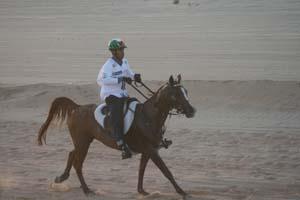 /international/UAE/2008PresidentsCup/Gallery/loop1best/thumbnails/IMG_3544.jpg