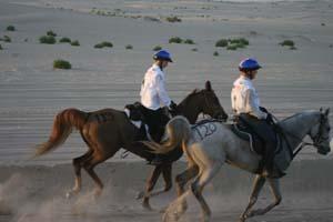 /international/UAE/2008PresidentsCup/Gallery/loop1best/thumbnails/IMG_3607.jpg