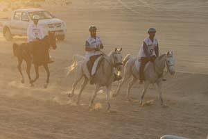 /international/UAE/2008PresidentsCup/Gallery/loop1best/thumbnails/IMG_3625.jpg