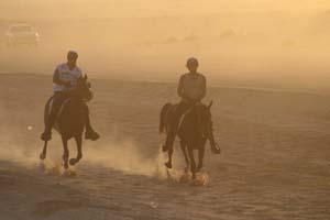 /international/UAE/2008PresidentsCup/Gallery/loop1best/thumbnails/IMG_3633.jpg