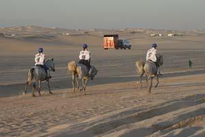 /international/UAE/2008PresidentsCup/Gallery/loop1best/thumbnails/IMG_3717.jpg
