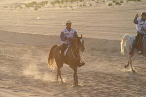 /international/UAE/2008PresidentsCup/Gallery/loop1best/thumbnails/IMG_3732.jpg