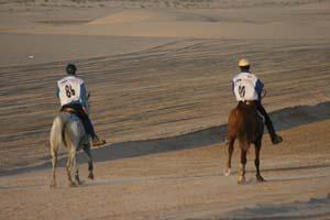 /international/UAE/2008PresidentsCup/Gallery/loop1best/thumbnails/IMG_3740.jpg