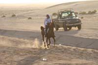 /international/UAE/2008PresidentsCup/Gallery/loop1best/thumbnails/IMG_3790.jpg