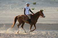 /international/UAE/2008PresidentsCup/Gallery/loop1best/thumbnails/IMG_3819.jpg