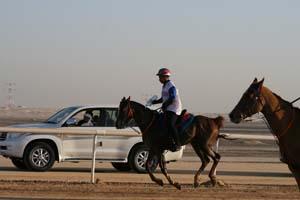 /international/UAE/2008PresidentsCup/Gallery/loop1best/thumbnails/IMG_3887.jpg