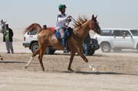 /international/UAE/2008PresidentsCupJYR/gallery_best_Feb09/thumbnails/IMG_1631.jpg