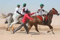 /international/UAE/2008PresidentsCupJYR/gallery_best_Feb09/thumbnails/IMG_1697.jpg