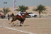 /international/UAE/2008PresidentsCupJYR/gallery_best_Feb09/thumbnails/IMG_1917.jpg
