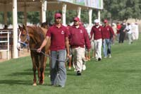 /international/UAE/2009PresidentsCup/gallery/03Fri/thumbnails/0902PCup_141.jpg