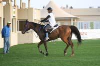/international/UAE/2009PresidentsCup/gallery/04Sat/thumbnails/0902PCup_212.jpg