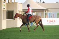 /international/UAE/2009PresidentsCup/gallery/04Sat/thumbnails/0902PCup_214.jpg