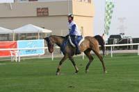 /international/UAE/2009PresidentsCup/gallery/04Sat/thumbnails/0902PCup_224.jpg