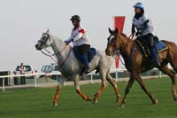 /international/UAE/2009PresidentsCup/gallery/04Sat/thumbnails/0902PCup_235.jpg