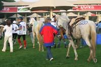/international/UAE/2009PresidentsCup/gallery/04Sat/thumbnails/0902PCup_253.jpg